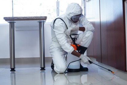 Emergency Pest Control, Pest Control in Plaistow, E13. Call Now 020 8166 9746