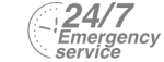 24/7 Emergency Service Pest Control in Plaistow, E13. Call Now! 020 8166 9746